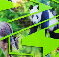 Zoos SA